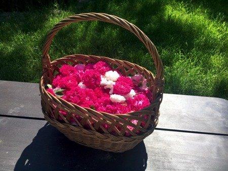 Hydrolat z róży damasceńskiej Danowiecki